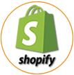Shopify Website Audit